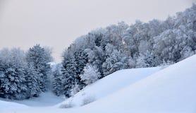 多雪的小山 库存图片