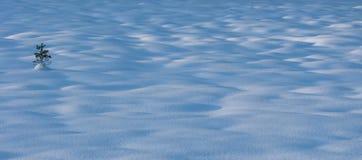 多雪的小山 免版税库存照片