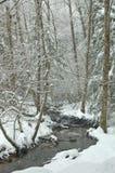 多雪的小河 免版税库存照片
