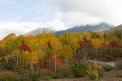 多雪的山峰和秋季颜色在Daisetsuzan 免版税库存图片