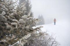 多雪的山的游人 库存图片