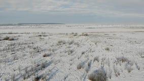 多雪的干草原鸟瞰图,乡下风景 土地长满与灌木和杂草 使向前的飞行光滑 股票录像