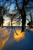 多雪的日落 免版税库存照片