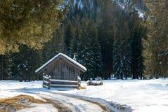 多雪的树的小冬天房子 图库摄影