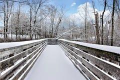 多雪的桥梁 库存图片