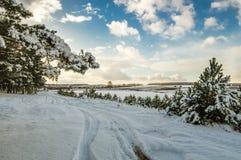 多雪的森林全景,路,俄罗斯,乌拉尔 免版税库存图片