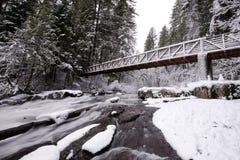 多雪的森林冬天风景有一座桥梁的在岩石mounta 库存图片
