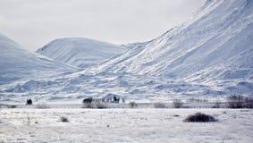 多雪的横向 库存图片