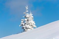 多雪的横向 免版税库存照片