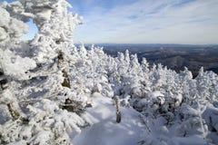 多雪的横向 图库摄影