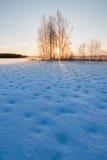 冻多雪的湖和日出在树后 库存图片