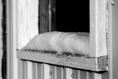 多雪的窗台 免版税库存图片