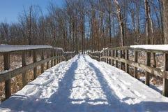 多雪的线索 图库摄影