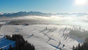 多雪的谷寄生虫视图在山的与在阴霾和明亮的阳光的树 影视素材