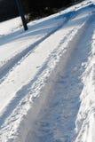 多雪的跟踪 库存图片