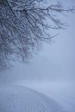 多雪的路在冬天公园 库存图片