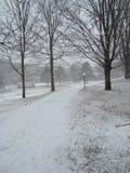 多雪的路径 图库摄影
