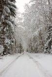 多雪的路 免版税库存照片