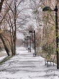 多雪的运输路线 免版税库存照片
