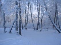 多雪的长凳 免版税库存图片