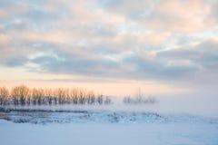 多雪的领域冬天有树的风景或荒原由薄雾或雾hiden在日出光芒  免版税图库摄影