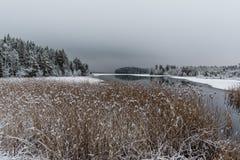 多雪的风景俯视的水和冰 免版税库存图片