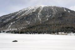 多雪的风景全景视图和山和汽车在雪在阿尔卑斯瑞士 库存照片