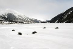 多雪的风景全景视图和山和汽车在雪在阿尔卑斯瑞士 库存图片