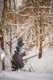 多雪的风景和河照片  图库摄影