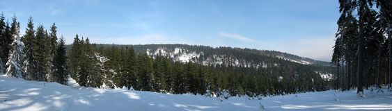多雪的风景的全景 免版税库存图片