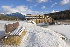 多雪长凳的公园 免版税库存照片