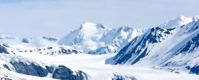 多雪阿拉斯加的山 免版税库存图片