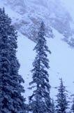 多雪1座的山 免版税库存图片