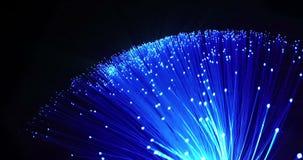 多颜色细节从蓝色生长束的与退色光纤的作用对黑背景,文本的,快速的光空间 股票录像
