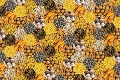 多香果八角桂皮枝象蜂窝样式烹饪椰子胡说的森林和杏仁设置了多角形背景基地 免版税库存图片