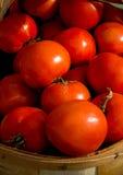 水多,新鲜的蕃茄待售 库存照片