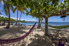 多巴哥海滩 免版税图库摄影