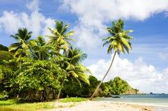 多巴哥 免版税库存照片