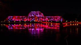 夜与色的反射的激光投射在水 免版税库存照片