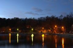 夜公园街道图和树1 免版税库存照片