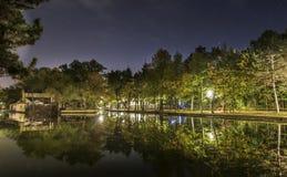 夜公园视图 库存照片