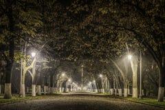 夜公园视图 库存图片