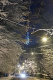 夜冬天利沃夫州街道和电视耸立,乌克兰 免版税库存图片