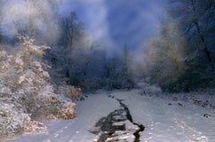 夜冬天图片 库存照片