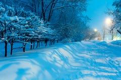 夜冬天城市场面 库存照片