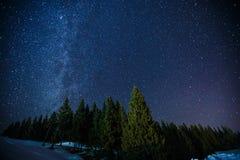夜冬天满天星斗的天空,长的曝光照片午夜星和多雪的森林的Beautifull风景在杉木森林上的 免版税图库摄影