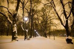 夜在公园 库存照片
