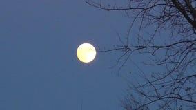 夜在天空的满月行动 股票视频