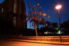 夜在法马古斯塔,塞浦路斯 免版税图库摄影
