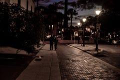 夜场面在佛罗里达 库存图片
